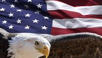 「アメリカン・ロイヤルロード」の新規設定額は2019年最大に