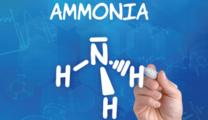 アンモニア 脱炭素の隠し玉、巨大市場創出へ